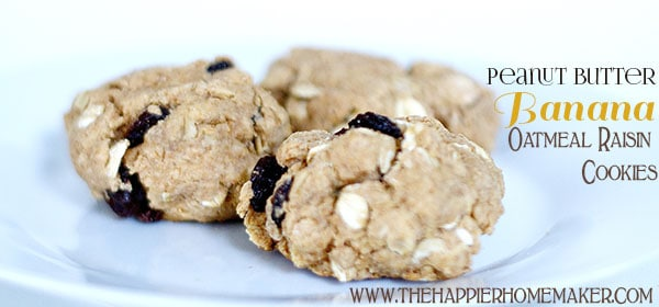 peanut butter banana oatmeal raisin cookie recipe