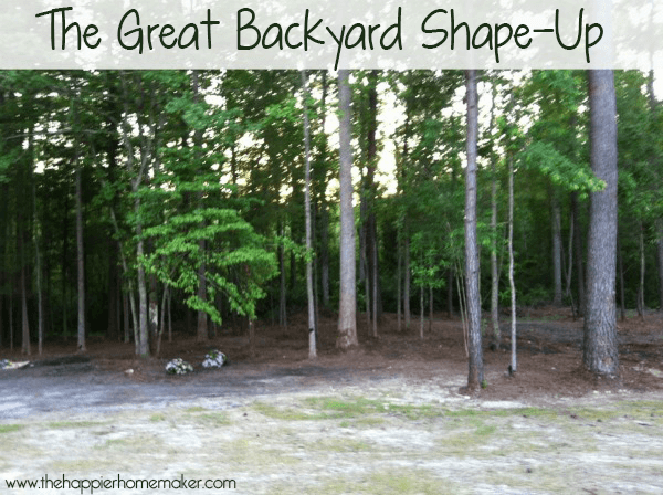The Great Backyard Shape-Up
