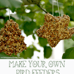 Kid's make your own birdfeeders shaped as stars
