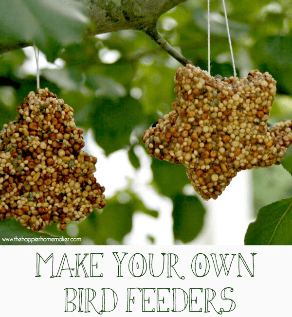 Kid\'s make your own birdfeeders shaped as stars