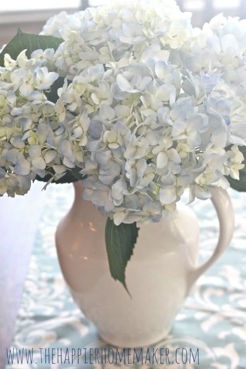 A close up of white and light blue hydrangea flowers in a white vase