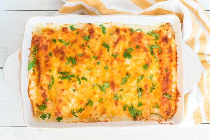 overhead view of chicken enchiladas in white casserole dish