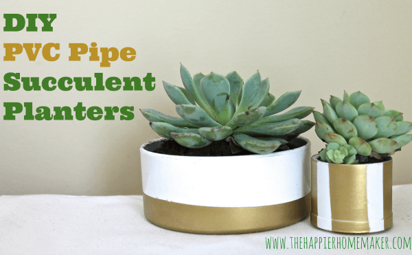 DIY PVC Pipe Succulent Planters