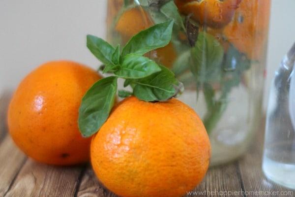 orange basil cleaner