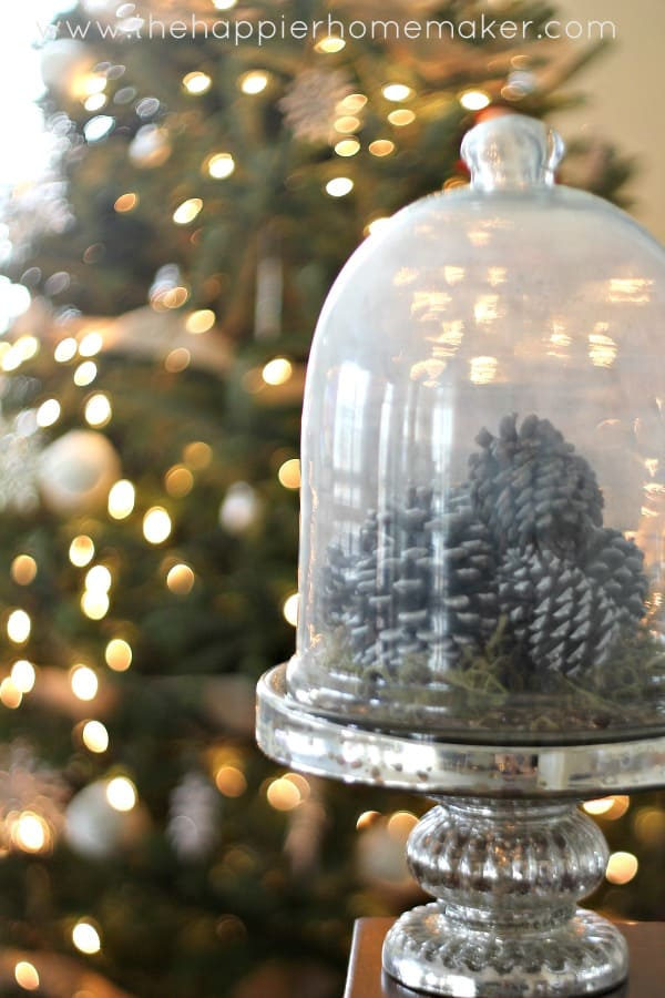 cloche pinecones moss diy