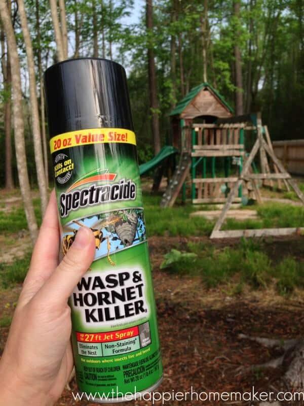 spectracide wasp hornet killer