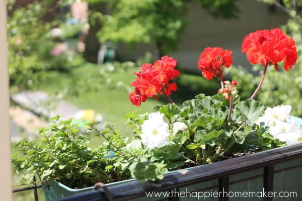 flowerbox front porch