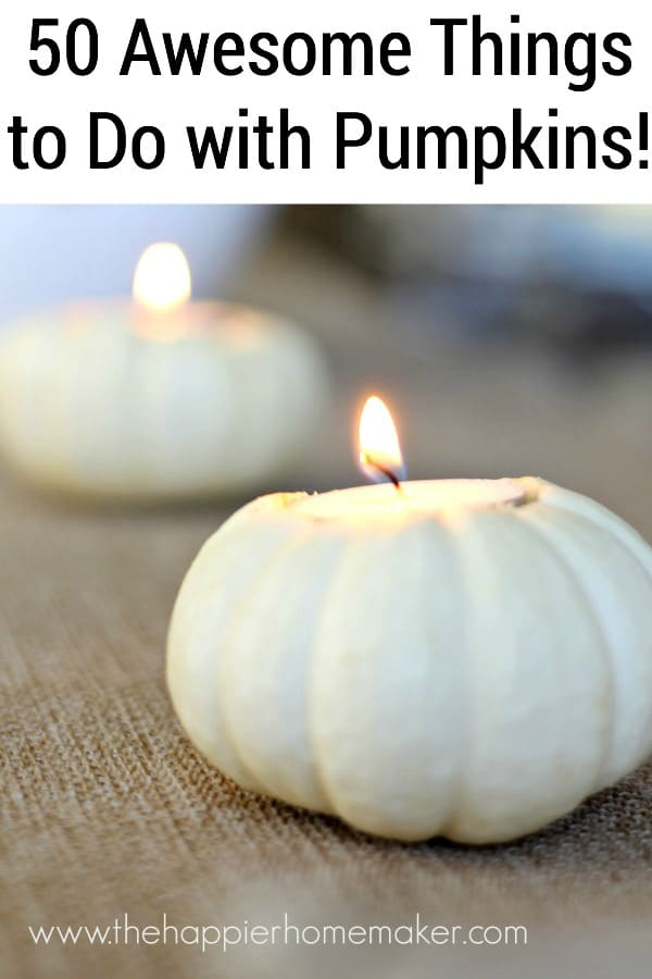 All things Pumpkins & Gourds