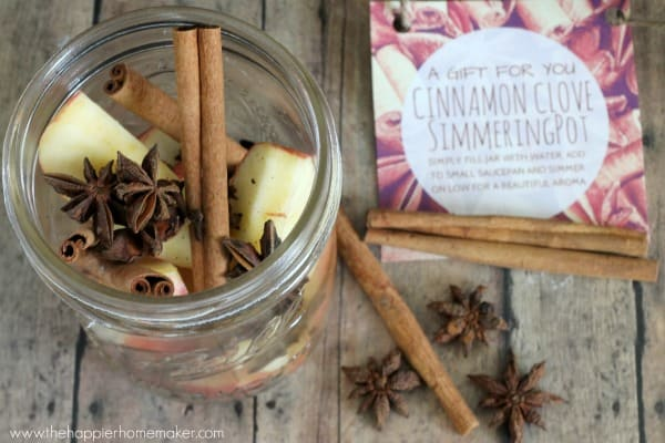 apple cinnamon clove simmering pot recipe