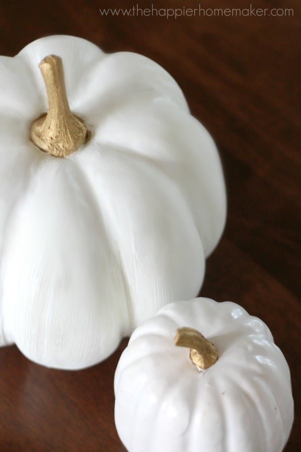 An overhead picture of two fake, white pumpkins used as interior decor