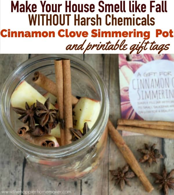 scent house without chemicals cinnamon