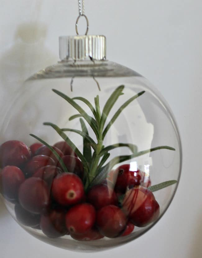 Cranberry and Rosemary Ornament