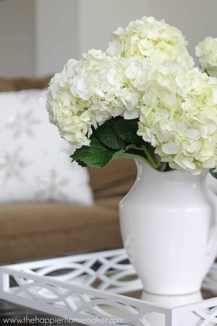 A close up of white hydrangea flowers in a white vase