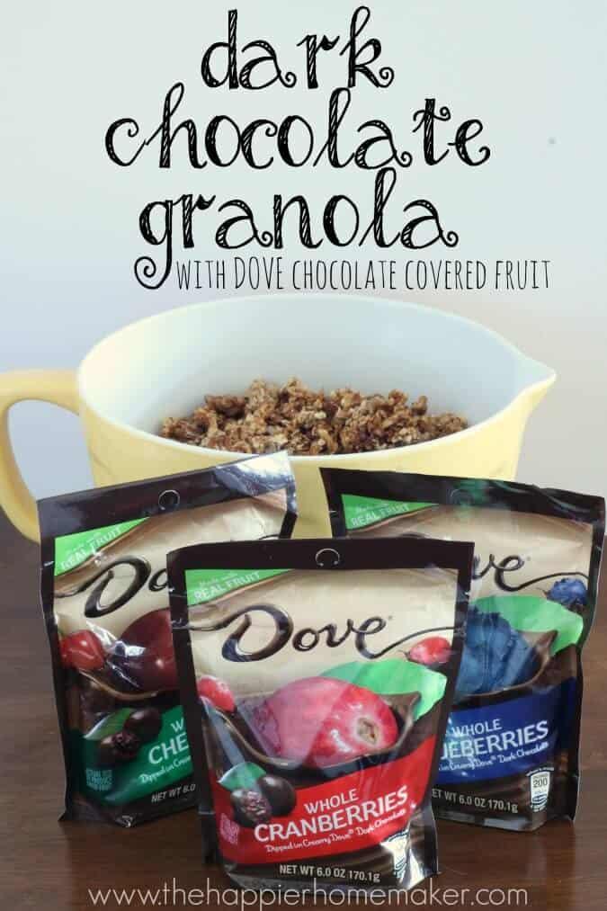 dove chocolate fruit recipe granola