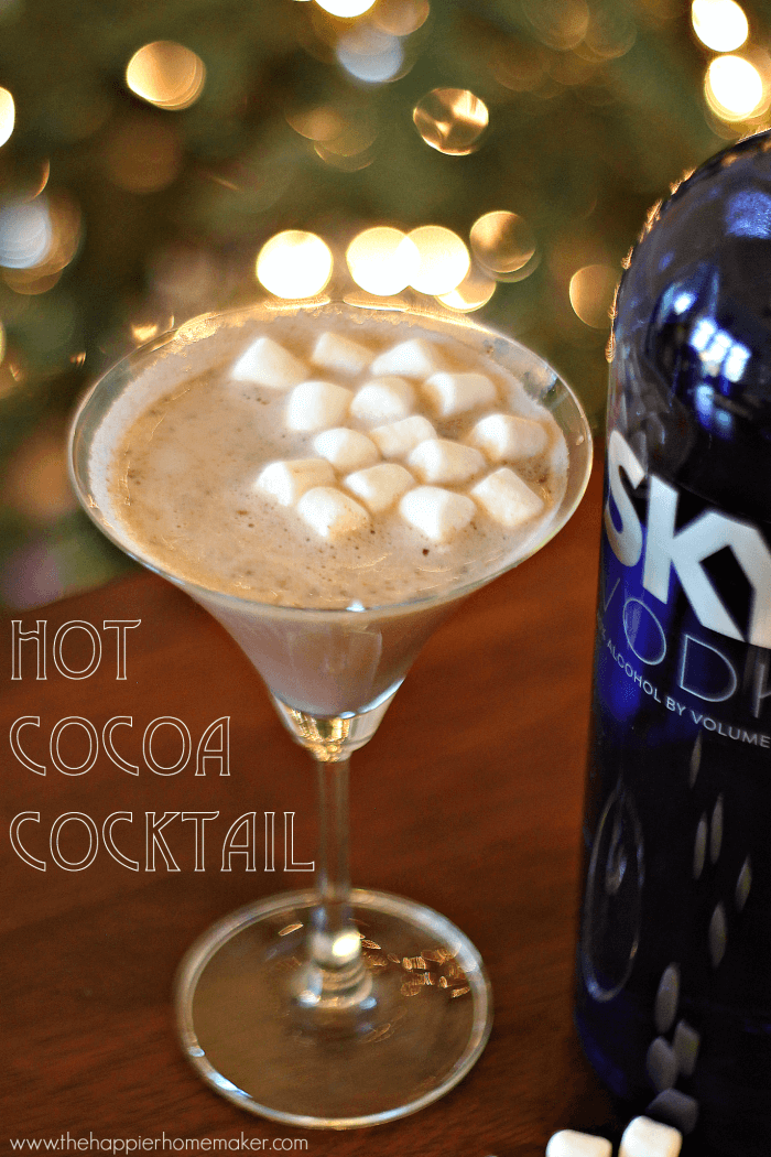 A hot chocolate cocktail next to a bottle of Sky vodka