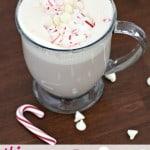 skinny peppermint mocha latte