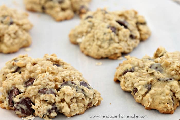 A close up of soft and chewy chocolate chip oatmeal cookies on wax paper