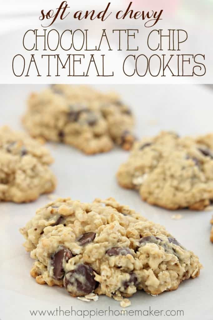 soft chewy chocolate chipe oatmeal cookies