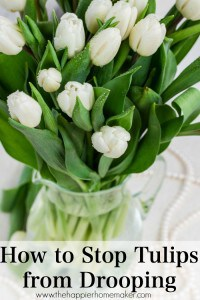 how to stop tulips from drooping