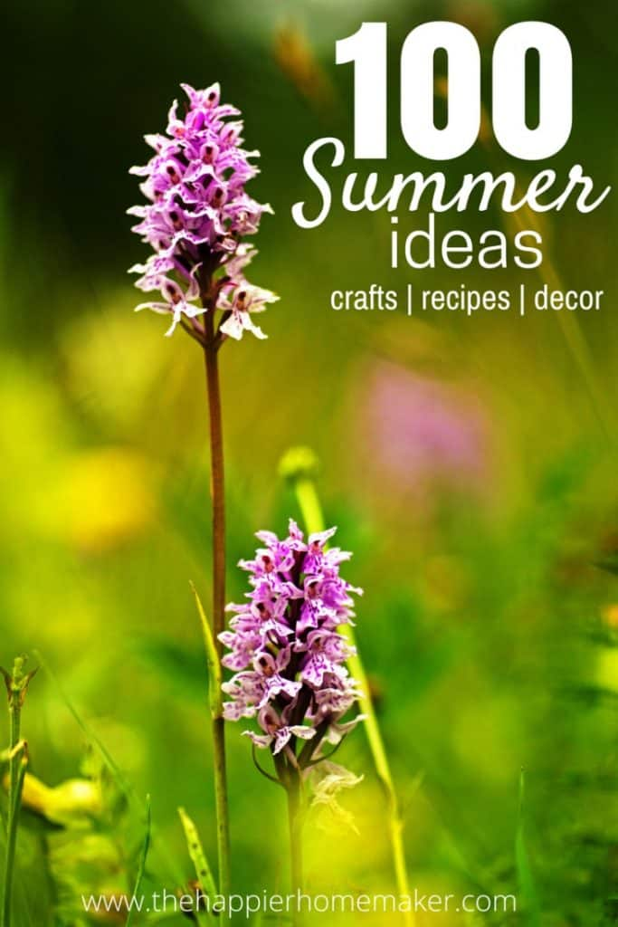 100 Summer Ideas Recipes Decor Crafts