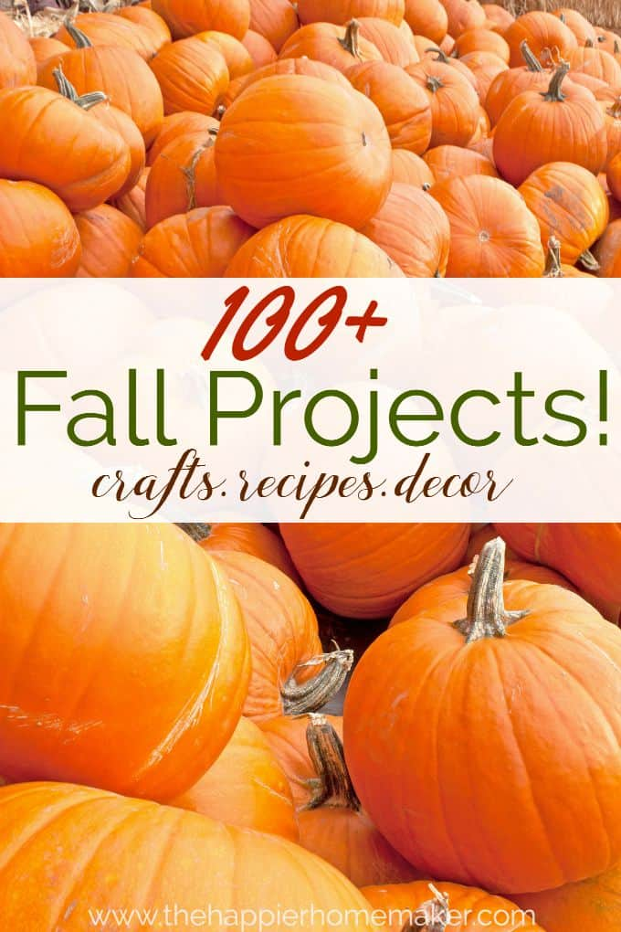 100 fall projects