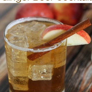 A glass of apple cider ginger beer garnished with a cinnamon stick and a apple slice