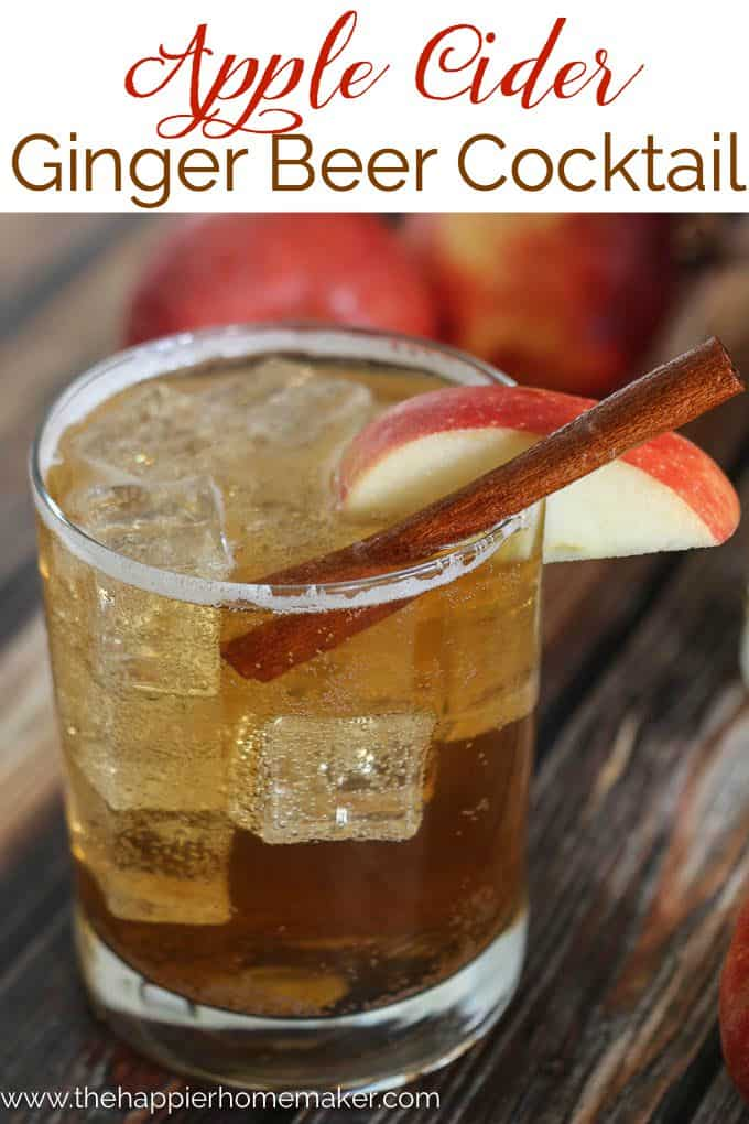 Apple Cider Ginger Beer Cocktail in highball glass with cinnamon stick and apple slice