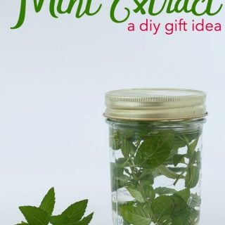 DIY Gift Idea: Homemade Peppermint Extract