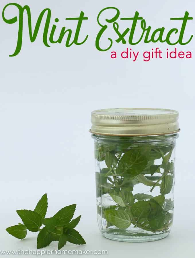 DIY Gift Mint Extract homemade gift