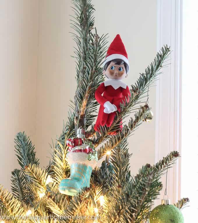 Christmas Tree Tips-4