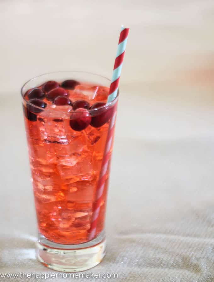 Cranberry Punch-3