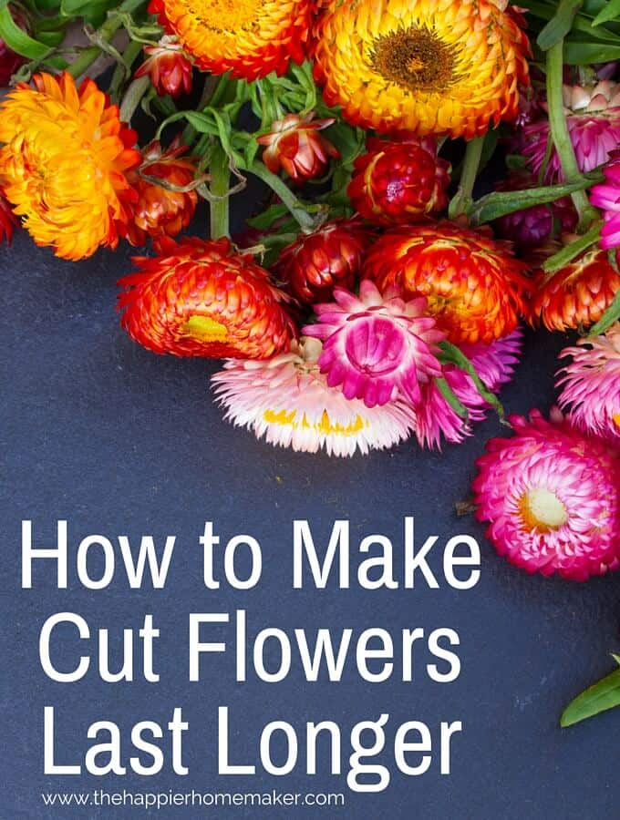 How To Make Cut Flowers Last Longer I Love Having Fresh Flowers At Home But