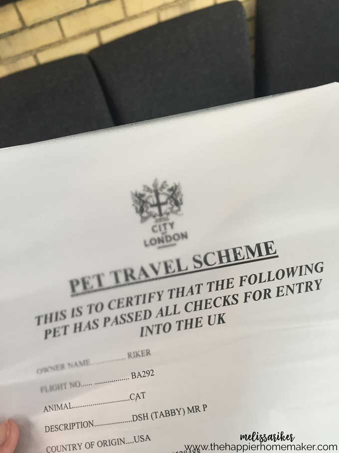 pet-travel-to-uk