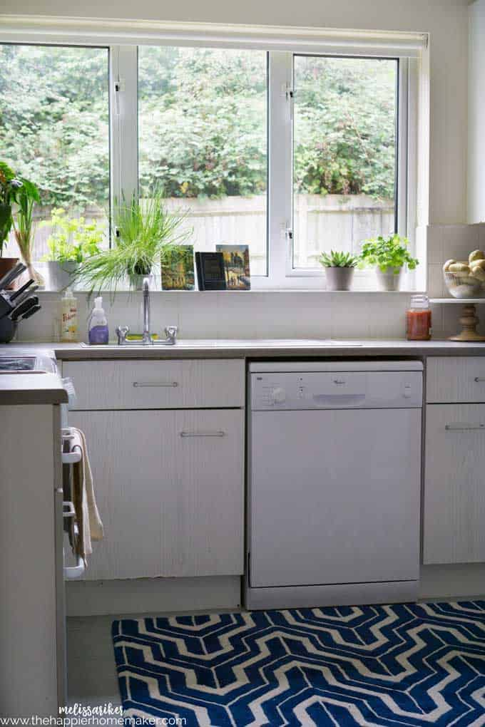 A white kitchen with accent plants