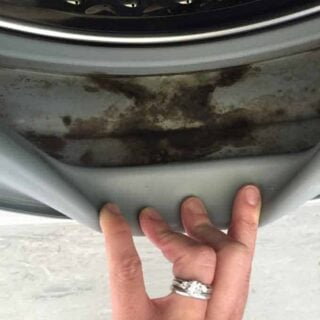 hand holding dirty washing machine seal open