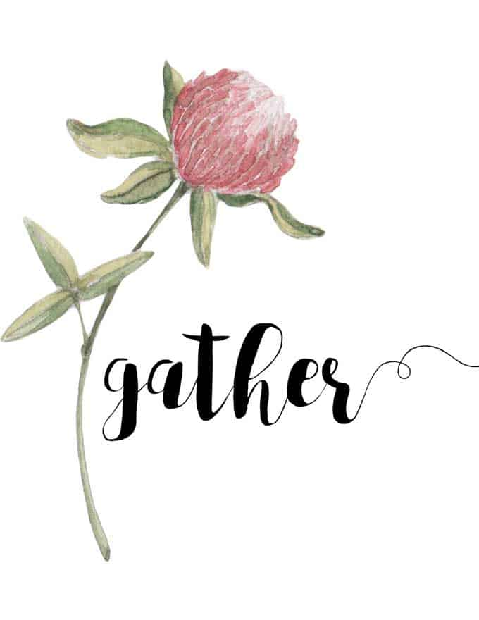 "A pale pink thistle on a green stem with the word ""gather"" to the right of it"