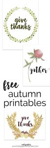 Free autumn printables are the perfect way to add inexpensive updates to your fall decor.