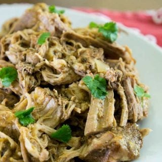 A close up of carnitas topped with parsley on a white plate