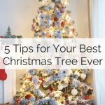 5 Tips to help you pick and decorate your very best Christmas tree ever!
