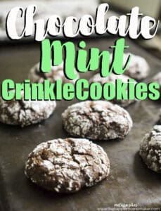 chocolate mint crinkle cookies on baking sheet
