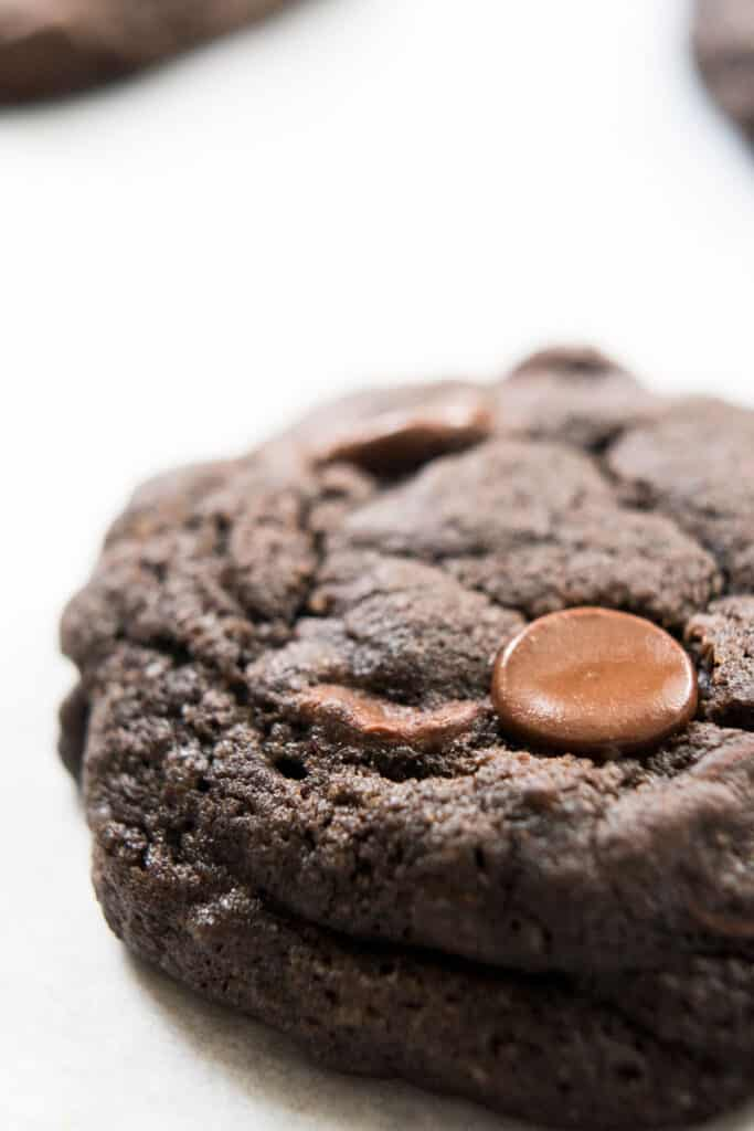 A close up of a chocolate cookie with chocolate chips