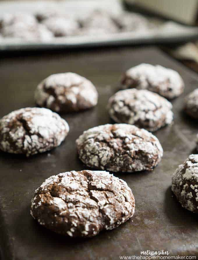 Peppermint Crinkle Cookies are a fun twist on the classic chocolate recipe. Soft, fudgy and bursting with mint flavor!