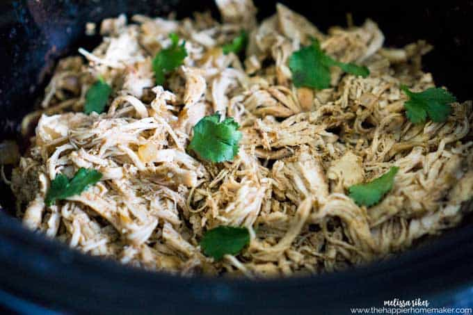 Slow cooker carnitas style chicken in a slow cooker with chopped cilantro on top