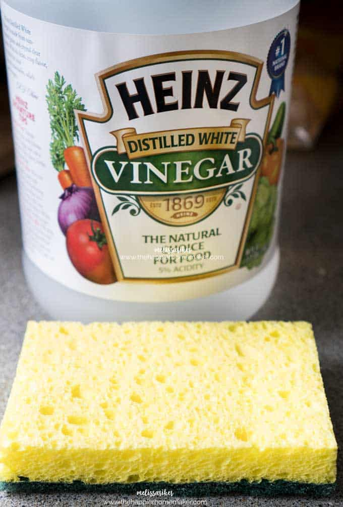 A close up of White Vinegar and a yellow sponge
