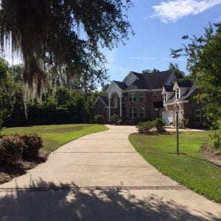 A concrete driveway with a tree and spanish moss.