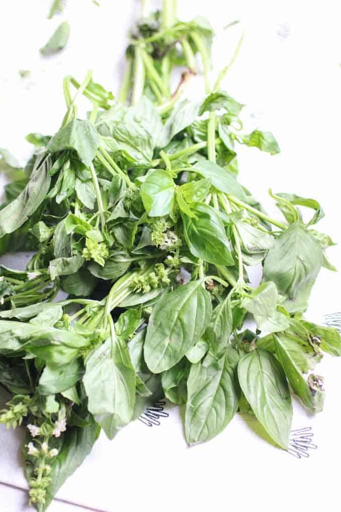 Pesto Potato Salad with Green Beans