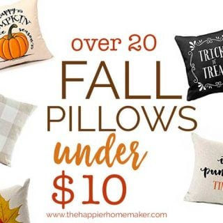 Over 20 fall pillow covers that are under $10! Such an easy and inexpensive way to update your seasonal autumn decor!