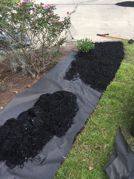flower bed with landscape fabric and mulch