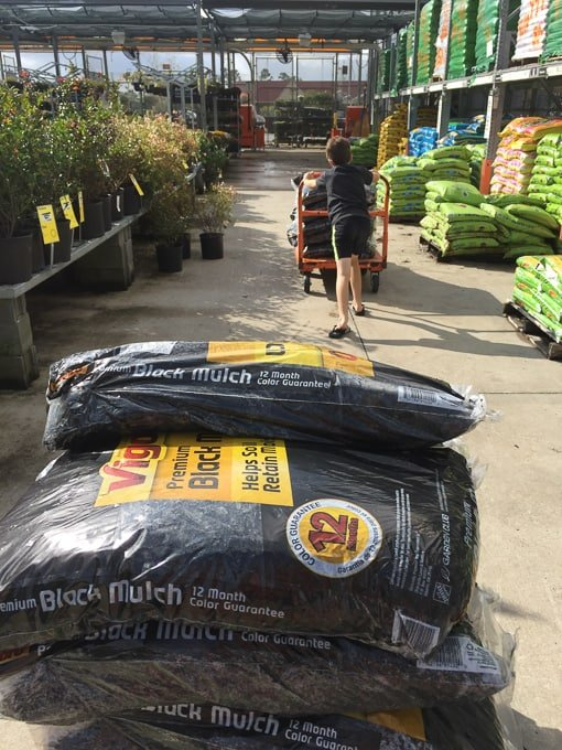 bags of mulch on a cart at home improvement store