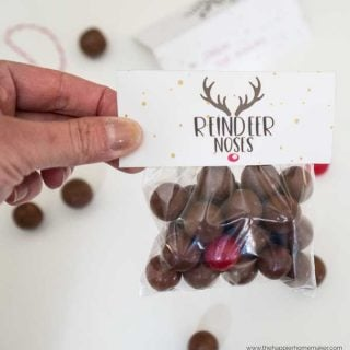Reindeer Nose Gift with Free Printable Tags